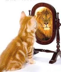 Jag har inga problem med självkänslan i alla fall.